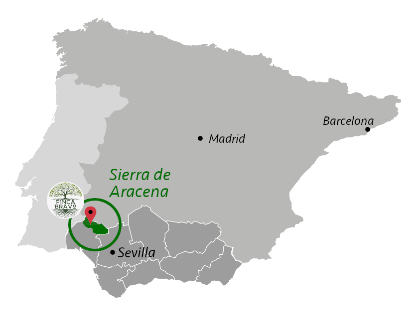 Map of Sierra de Aracena and Spain