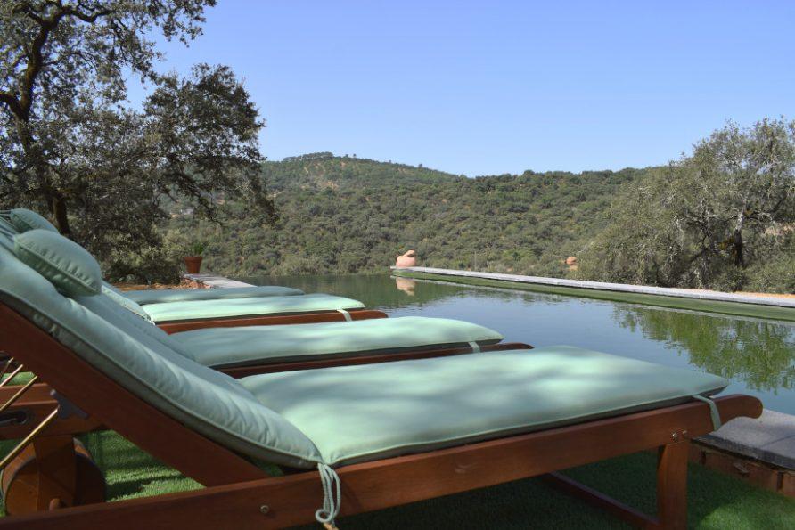 Natural pool green filter